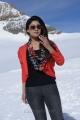 Actress Nayanthara Hot in Greeku Veerudu Stills