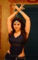 Nayanthara Hot Stills in Greeku Veerudu Movie