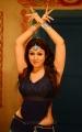 Nayanthara Hot Stills in Greeku Veerudu Movie