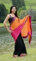 Nayantara Hot Stills in Greeku Veerudu Movie