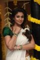 Actress Nayanthara in Onam Saree Beautiful Photos