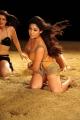 Tamil Actress Nayanthara Hot Recent Pictures