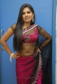 Telugu Actress Neelam Shetty in Saree Hot Stills