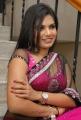 Actress Neelam Shetty Saree Hot Stills