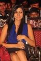 Telugu actress Neelam Upadhyay Hot Stills in Blue Dress