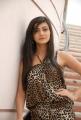 Telugu Actress Neelam Upadhyay Latest Photos