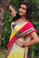 Neelam Upadhyaya Saree Photos @ Tamasha Movie Opening