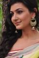 Tamasha Heroine Neelam Upadhyay Saree Photos