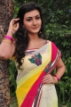 Neelam Upadhyay Saree Photos @ Tamasha Movie Launch
