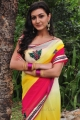 Neelam Upadhyaya Saree Photos @ Tamasha Movie Launch