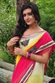 Actress Neelam Upadhyay in Saree Photos @ Tamasha Launch