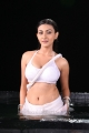 Actress Neelam Upadhyaya Hot Wet Photos in Action 3D Movie
