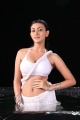 Action 3D Movie Actress Neelam Upadhyay Hot Wet Photos