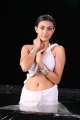 Telugu Actress Neelam Upadhyay Hot Wet Photos