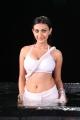 Action 3D Heroine Neelam Upadhyaya posing Hot in White Saree