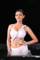 Actress Neelam Upadhyay Hot Wet Photos in Action 3D Movie
