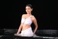 Telugu Actress Neelam Upadhyaya Hot Wet Photos