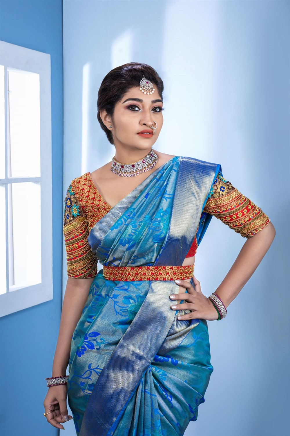 Actress Neelima Rani Saree Photoshoot Pics