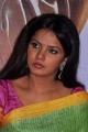 Actress Neetu Chandra Saree Photos