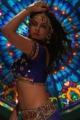 Neetu Chandra Item Song Hot Stills in Settai Movie