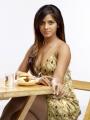 Neetu Chandra Latest Hot Photo Shoot Pictures