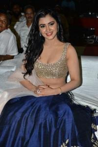 Actress Malvika Sharma @ Nela Ticket Audio Launch Stills