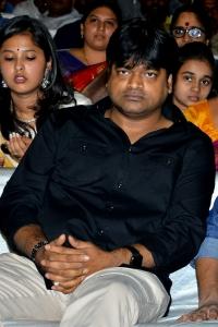 Harish Shankar @ Nela Ticket Audio Launch Stills