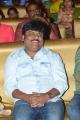 Trinadha Rao Nakkina @ Nenu Local Audio Release Function Stills