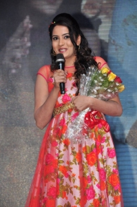 Nenu Sailaja Movie Audio Launch Stills