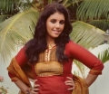 Tamil Actress Swetha Photoshoot Stills