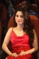 Tamannaah Bhatia @ Next Enti Trailer Launch Stills