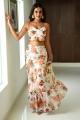 Actress Nidhhi Agerwal Photos @ iSmart Shankar Promotions