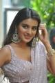 Actress Nidhhi Agerwal Saree Pics @ iSmart Shankar Movie Interview
