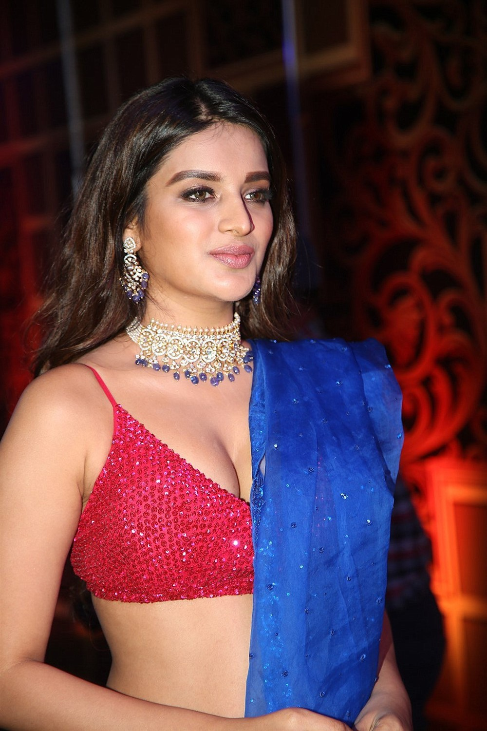 Actress Nidhhi Agerwal Images @ Zee Telugu Kutumbam Awards 2019 Red Carpet