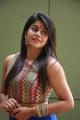 Actress Niharika Photos @ Eedili Movie Launch