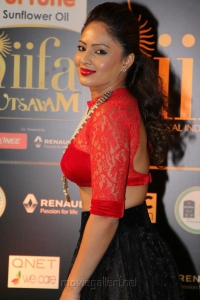 Actress Nikesha Patel Hot Images @ IIFA Utsavam 2016 Green Carpet