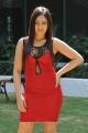 Nikesha Patel Hot Photoshoot in Red Skirt