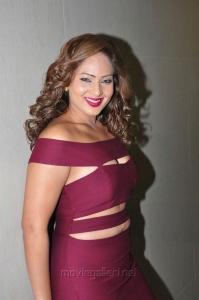 Actress Nikeesha Patel Hot Images in Dark Pink Dress