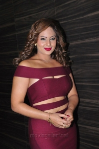 Actress Nikesha Patel Hot Images in Dark Pink Dress