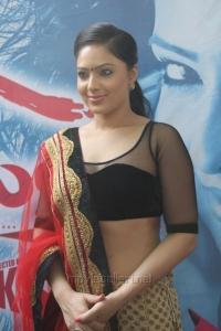 Narathan Heroine Nikesha Patel Latest Hot Pictures