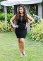 Tamil Actress Nikesha Patel Photoshoot Stills