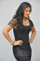 Actress Nikesha Patel Hot Stills in Black Tight Skirt