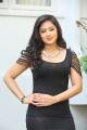 Telugu Actress Nikesha Patel Hot in Black Skirt Stills