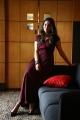 Tamil Actress Nikhila Vimal Photos @ Thambi Movie Promotions
