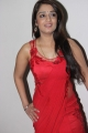 Actress Nikitha in Red Saree Hot Stills