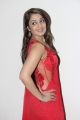 Actress Nikita Thukral in Red Saree Hot Stills