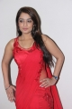 Actress Nikitha Hot Stills in Red Dress