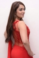 Actress Nikitha Hot Stills in Red Saree