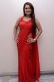 Actress Nikita Thukral in Red Saree Hot Stills