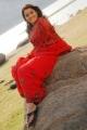 Nikitha in Red Saree Stills